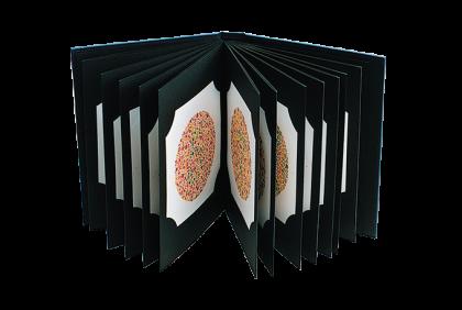 Leestesten - V003 Ishihara kleurentest